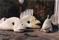 fish costumes in preparation